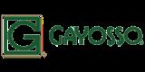 gayosso-80