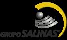 logo-gsalinas.png
